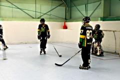 inline-hockey-playing